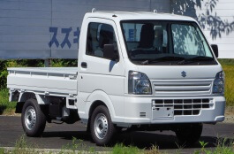 Suzuki Carry 1995 model